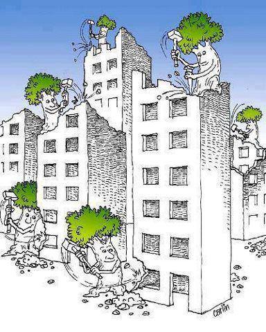 Arboles destruyendo edificios