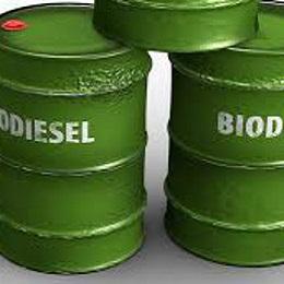 Charla: La cara oculta del biodiesel de aceite de palma @ Biblioteca Iván Vargas | Madrid | Comunidad de Madrid | España