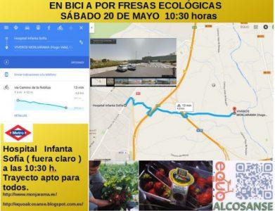 AlcoSanse - En bici a por fresas ecológicas @ Salida frente al Hospital Infanta Sofía | San Sebastián de los Reyes | Comunidad de Madrid | España