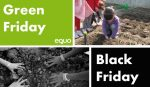 Green Friday vs BlackFriday