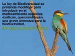 El PP reforma parcialmente la Ley de Biodiversidad, en contra del bien común
