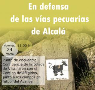 Actividad en defensa de las vías pecuarias de Alcalá @ Confluencia de la Colada Villamalea con el Camino de Afligidos, junto a los campos de futbol del Avance