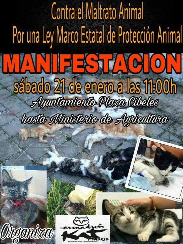 Manifestación por una Ley Marco Estatal de Protección Animal @ Plaza Cibeles | Madrid | Comunidad de Madrid | España