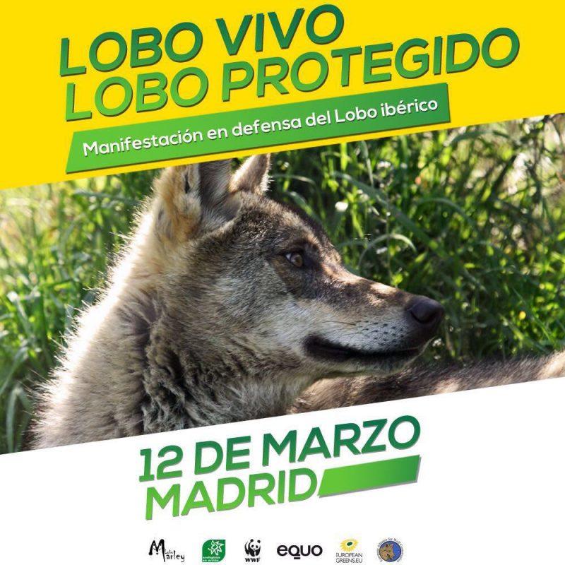 "Manifestación ""Lobo vivo, lobo protegido"""