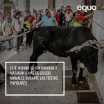 Instamos a los Ayuntamientos a celebrar unas fiestas sin maltrato animal