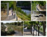 EQUO apoyará un nuevo acuerdo sobre la renaturalización del Manzanares
