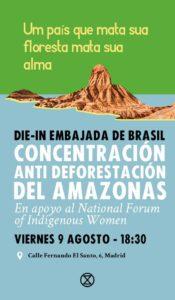 Concentración Anti deforestación del Amazonas @ Delante de la Embajada de Brasil