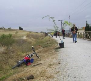 Plantación arboles en la Via Verde de Móstoles