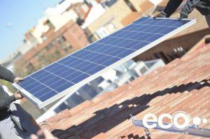 proyecto 50-50 ecooo