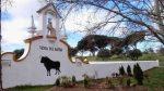 Pedimos el cierre de la escuela taurina de la Venta del Batán por promover el maltrato animal